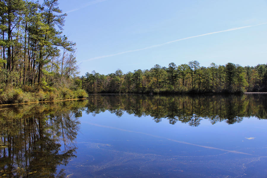 sesquicentennial state park - photo #35