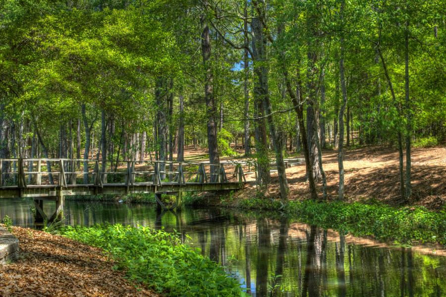 sesquicentennial state park - photo #7