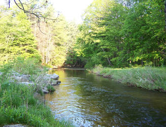 Coon Brook Down by Comtom1