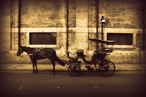 carriage by Elessar91