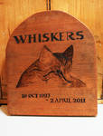 Whiskers by Itti