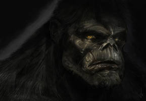 Do not call him ape