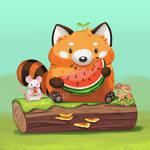Watermelon Red Panda and Rat