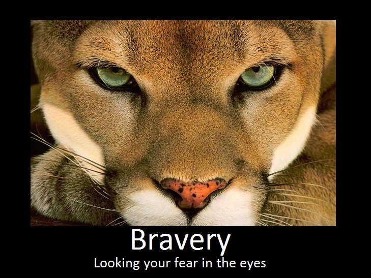 Post your favorite images depicting Bravery.  Bravery_motivational_by_serpent1212-d3er0vq