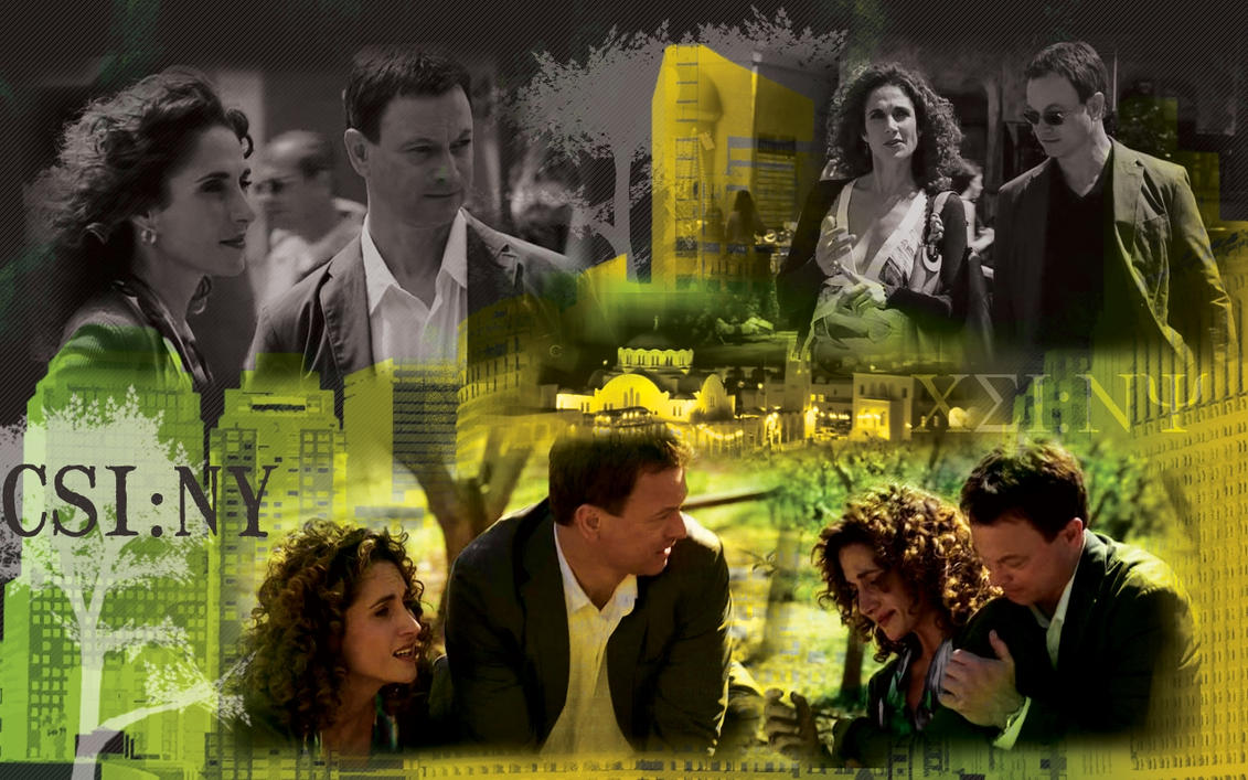 CSI:NY 5x24 by WATelse