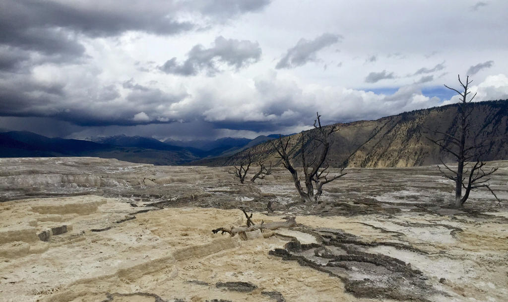 yellowstone mammoth hot springs by tamumu61