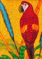 Parrot by LUNAtic-36