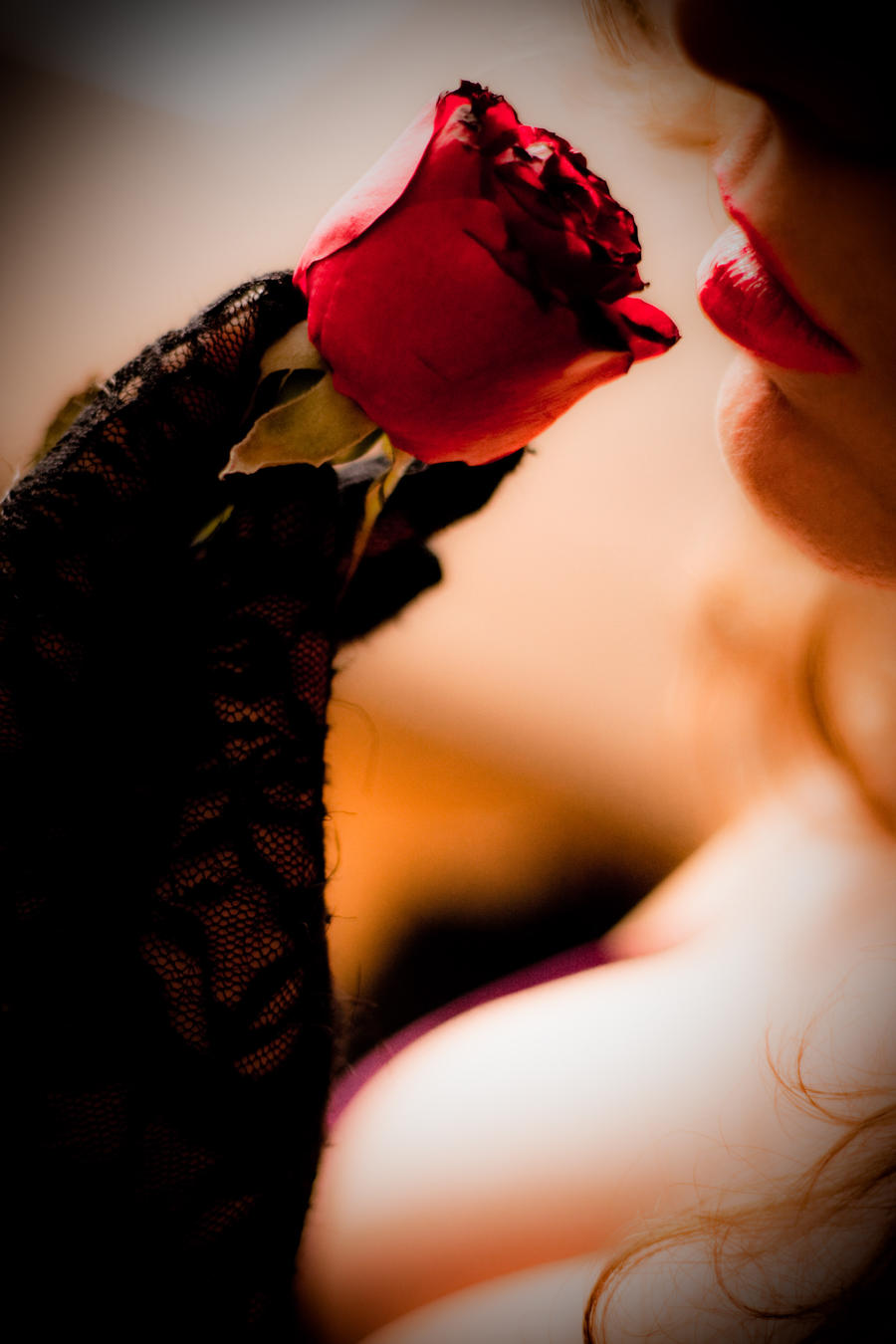 Red rose by Angelhand