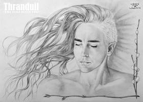sleeping Thranduil (*The fire suits you*) by hwaetmere