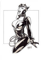 Private Commission - Cat Woman by manulupac