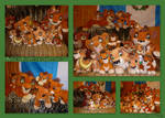 Kovu Collection 2012