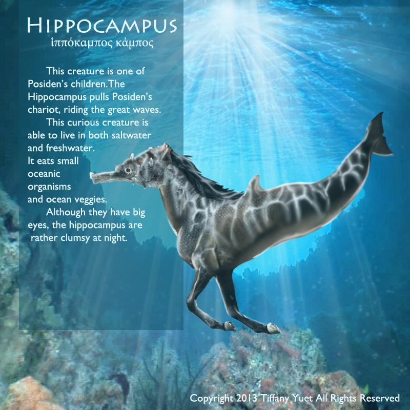 hippocampus animal percy jackson