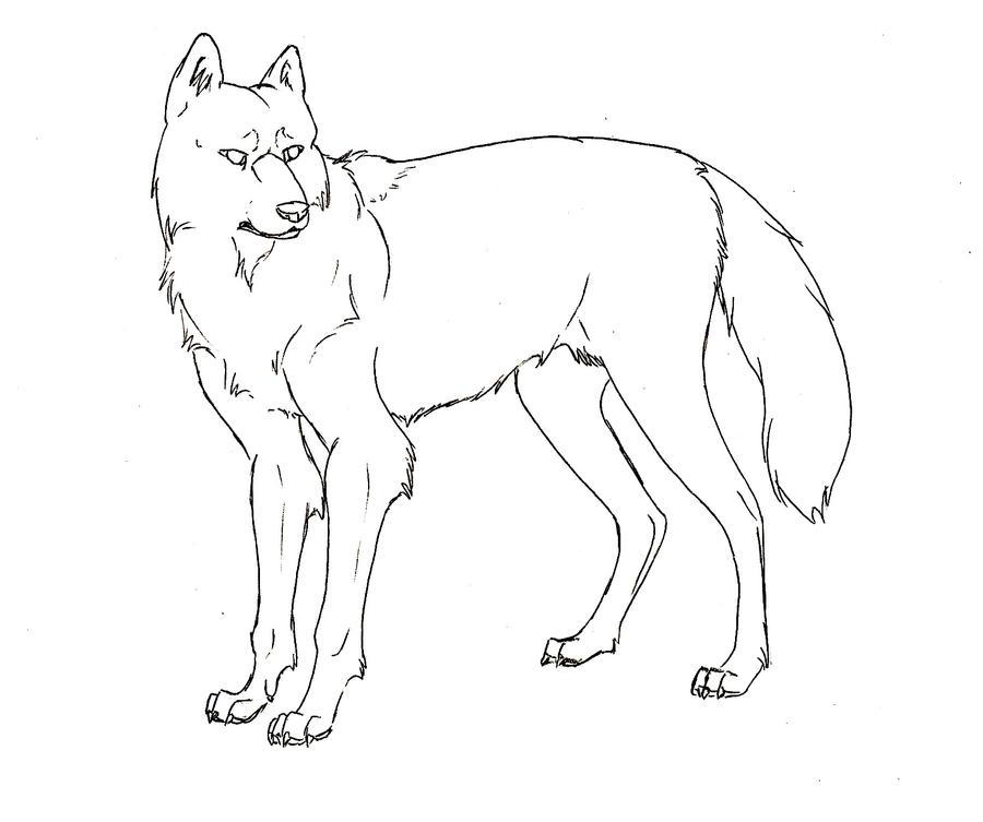 Line Drawing Wolf : Adult wolf line art by yazora on deviantart