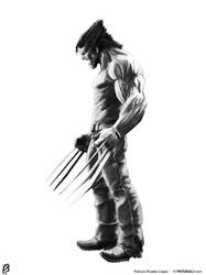 Wolverine by patokali