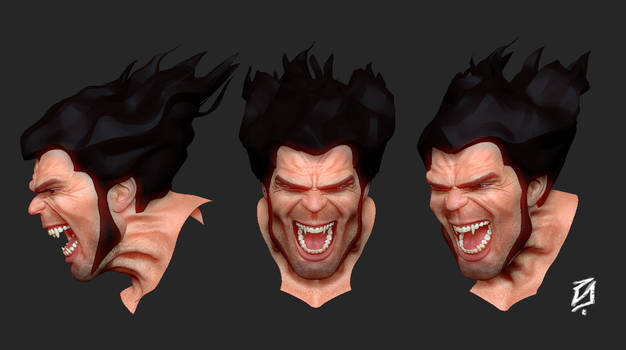 Wolverine Face