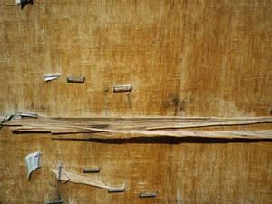 Wooden Board 06