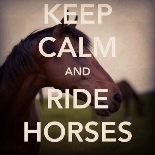 Keep Calm And Ride Hor...