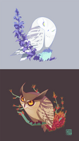 Indignant Owls by liea
