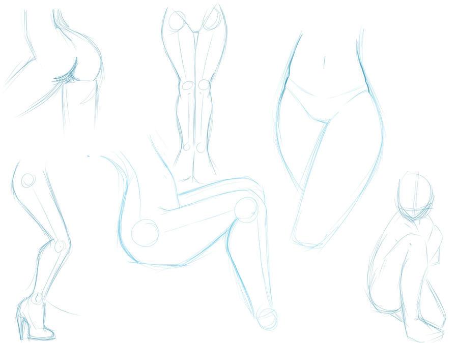 Female Leg Anatomy Sketches by MizMaxter on DeviantArt