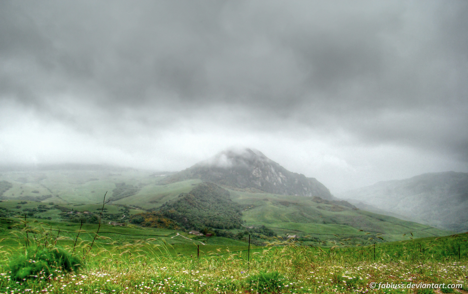 Foggy Morning on the Hills by Fabiuss
