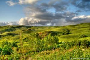 Sicilian Countryside 5