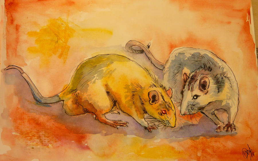 Rats by winterlest