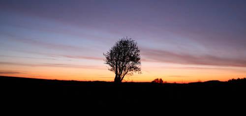 Spring sunrise by 0JCK0
