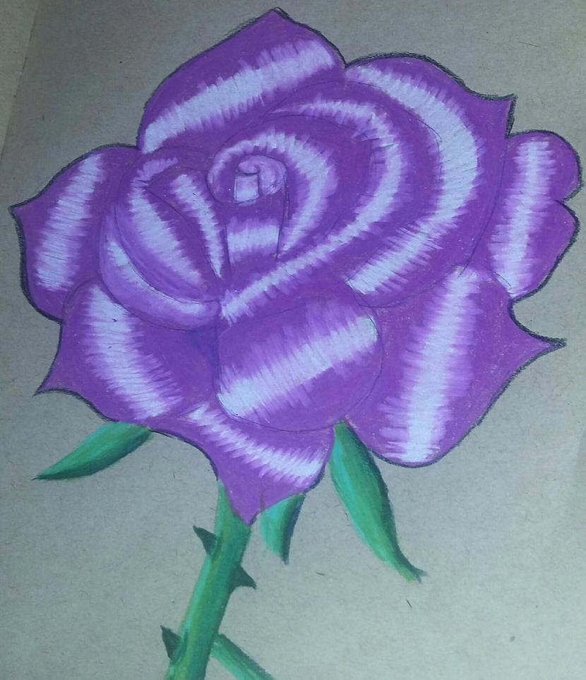 rose by galaxyforest