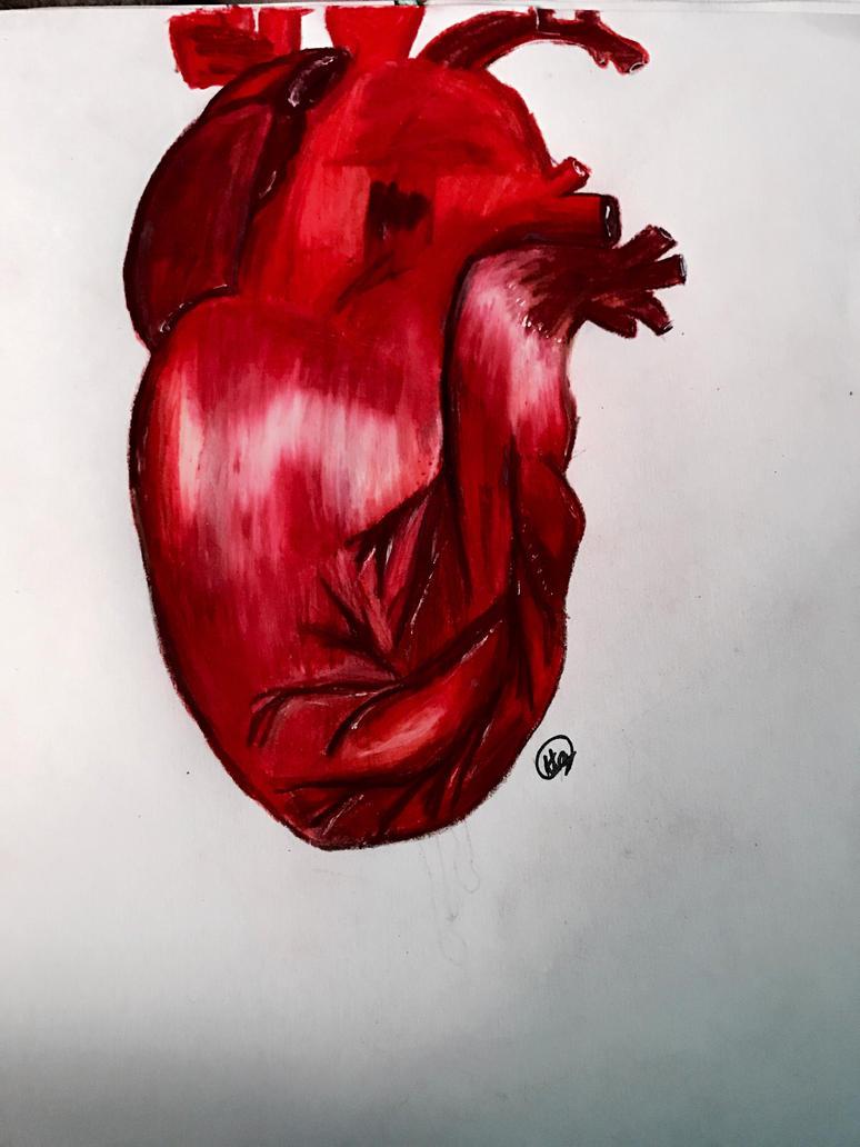 Heart  by galaxyforest