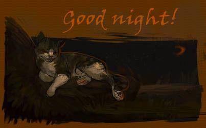 Good night! Warm memories