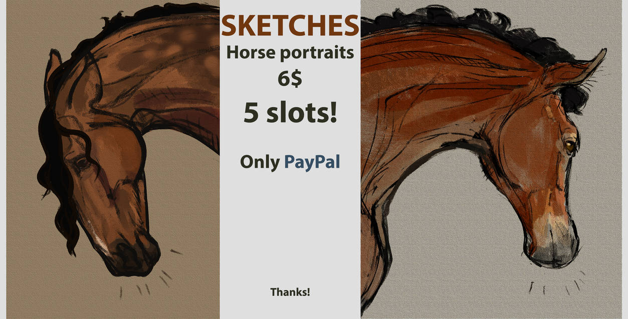 SKETCHES HORSE [OPENED 1/5]