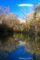 Medina River, TX by StewartSteve