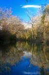 Medina River, TX