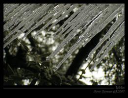 Icicles by StewartSteve