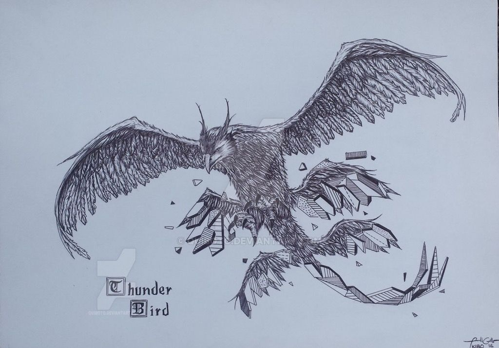 how to draw a mythical bird