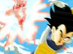 Goku and Vegeta Dragon Ball Z