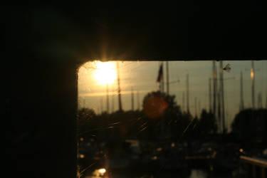 Marina by Gore-Shore