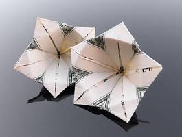 Dollar Bill Flowers by craigfoldsfives