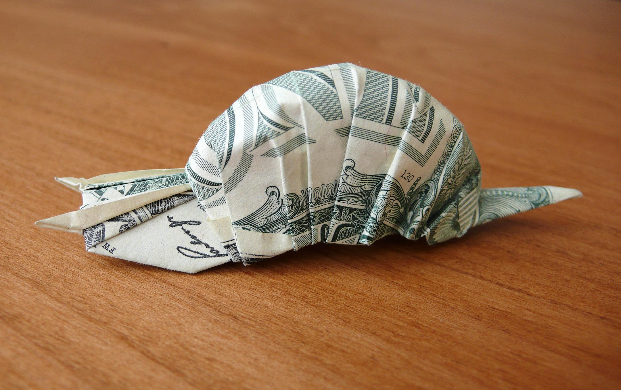Dollar Bill Snail by craigfoldsfives