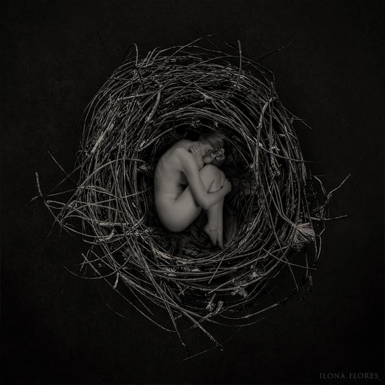 Nest by LiliumEternal