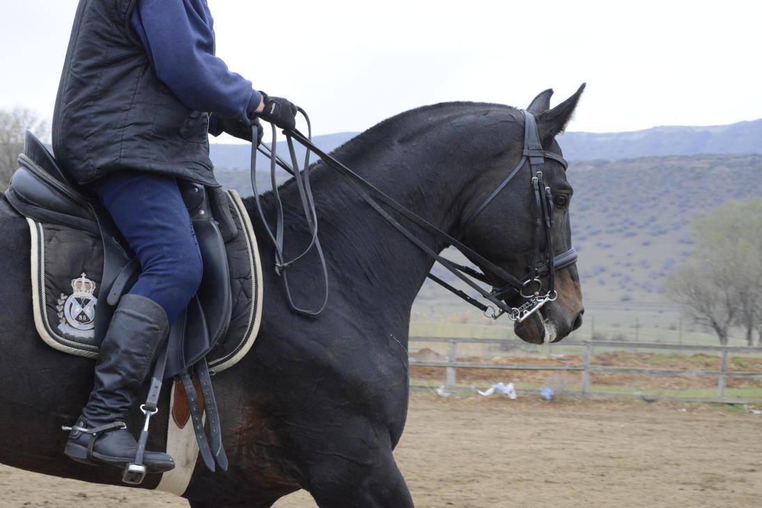 Ebonite 23 by aka-horse-stock