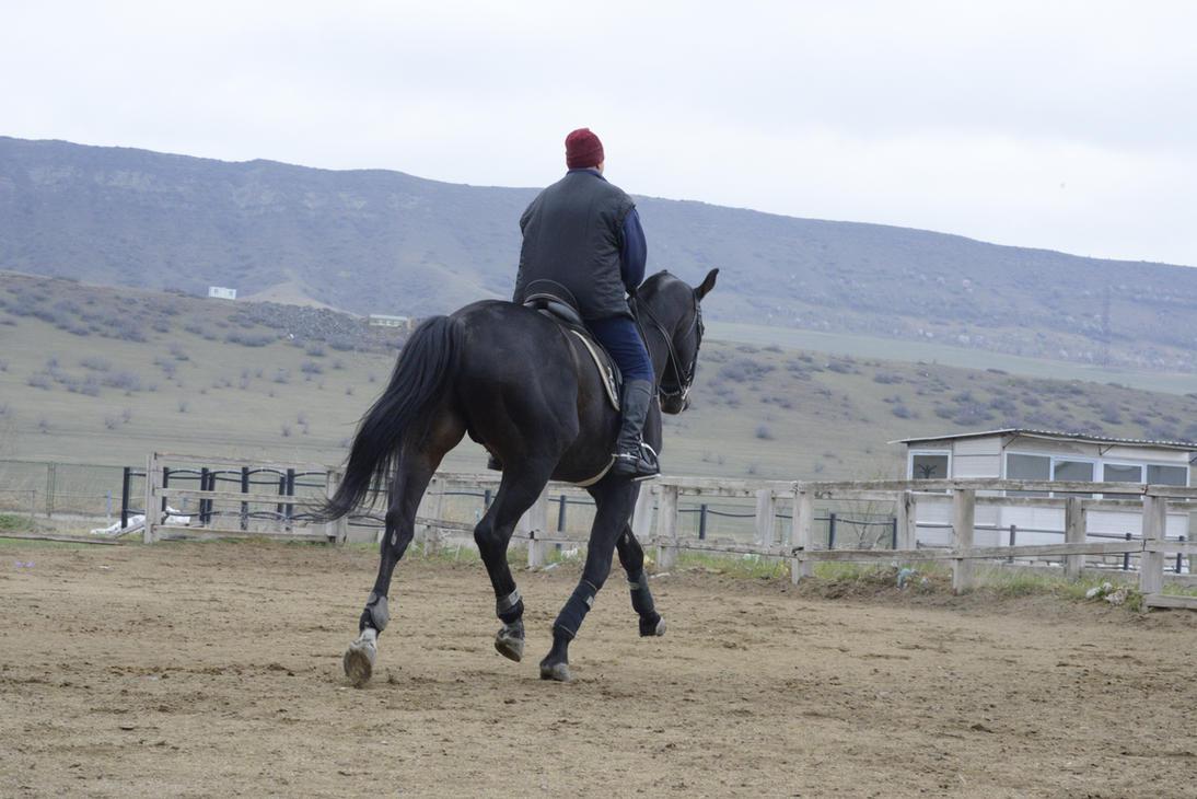 Ebonite 24 by aka-horse-stock