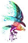 Rainbow Eagle