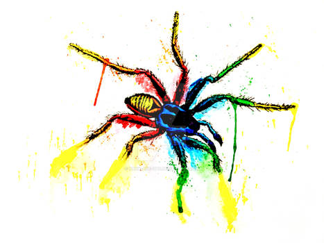 Neon Rainbow Pride Animals Spider