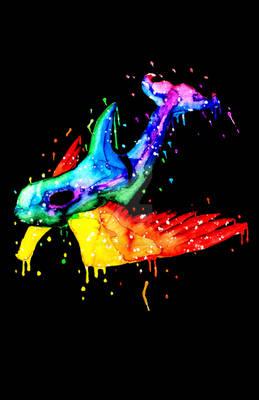 Rainbow Galaxy Sky Orca