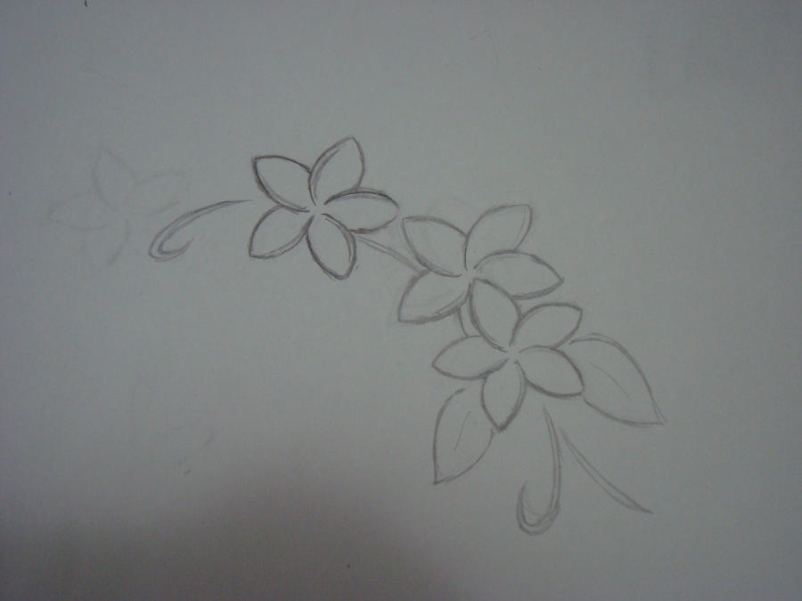 Sketch of a Plumeria Tattoo by ~BlueBerry25Blossom on deviantART