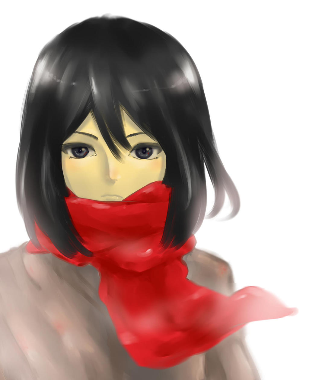 Mikasa ... by LailyFidya