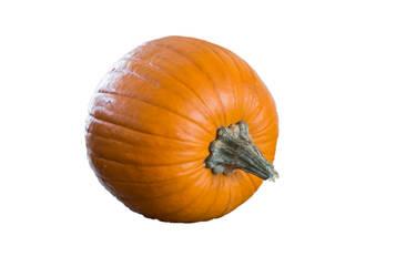 Pumpkin Stock 2