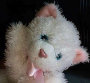 Snowcat2070's Profile Picture