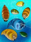 Hexameroceras and Friends